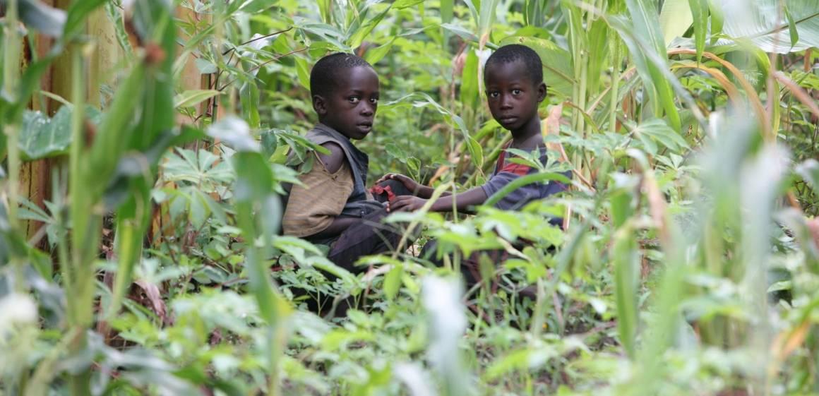 Barn plukker bønner i en åker utenfor Burundis hovedstad Bujumbura. IRIN/David Gough
